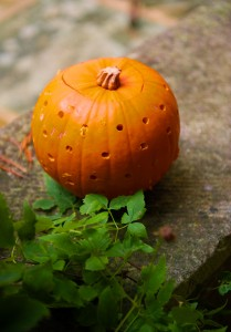 Pumpkins on your wedding day equal autumnal perfection